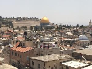 Zahrat al mada'en (Rose of the cities), Jerusalem. Image: Ahlam Najjar.